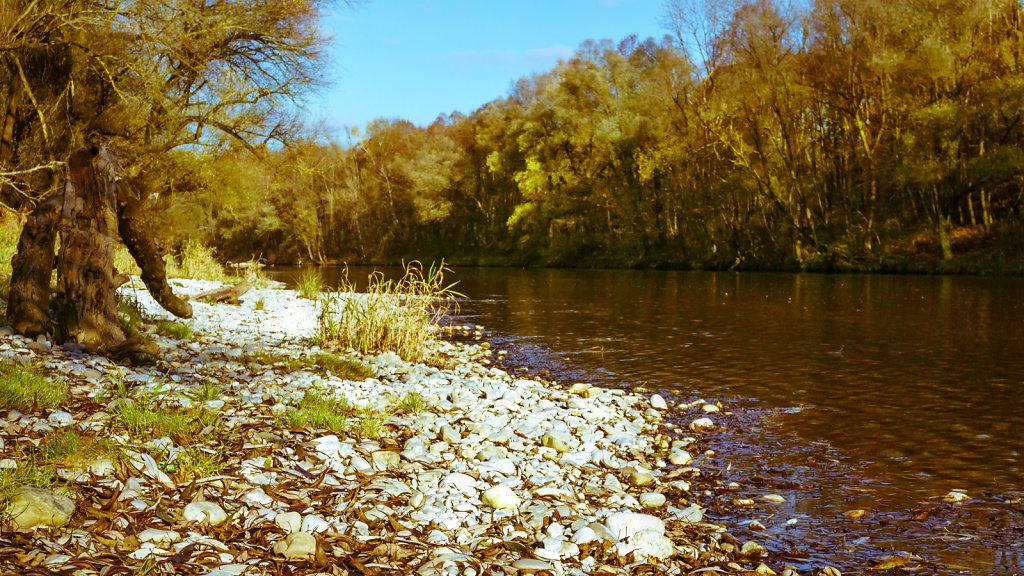 Fluss Isar im Herbst